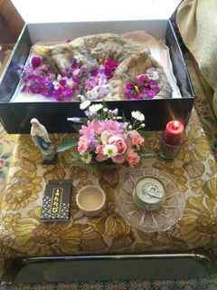 わが家のリビングで行われたミニミニお葬式