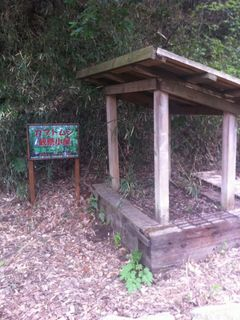 カブトムシ観察小屋