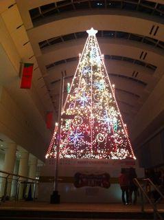 クイーンズ・イーストのクリスマスツリー
