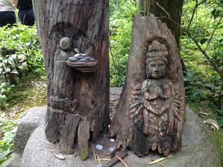 円覚寺境内で見つけました