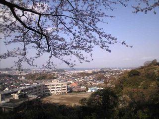 山頂付近から東京湾を望む