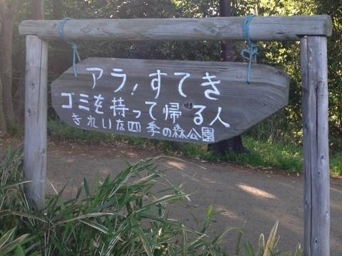 shikinomori03.jpg