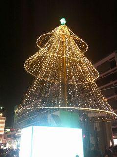 横浜駅西口のクリスマスツリー